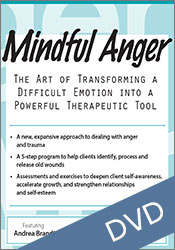 Mindful anger management santa monica